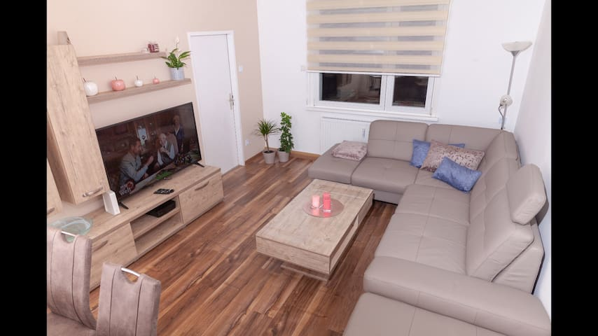 Neu-möblierte 2 Zimmer Wohnung mit Balkon