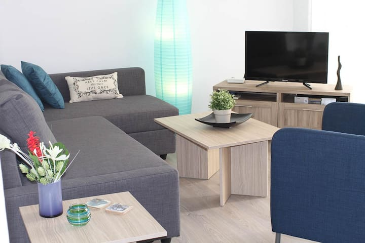 Living Room 1 Bedroom Apartment