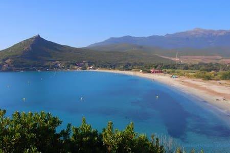 Cap Corse, maison typique en pierres - Pietracorbara - Hus