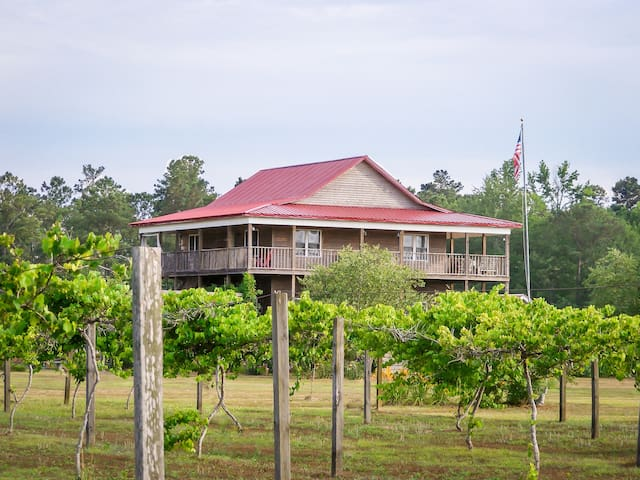 Cottage at vineyard near NC and SC beaches!