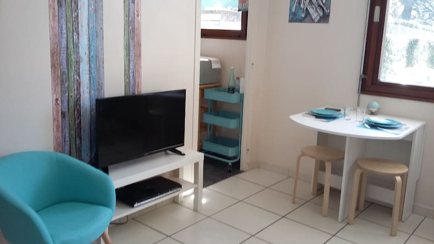 Studio+parking/1 à 4 personnes/frontière - Annemasse - Appartement