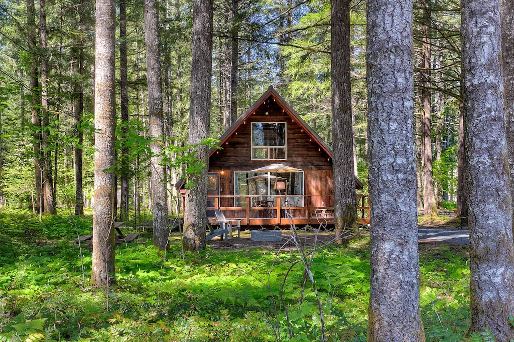 Knotty Cedars Retreat At Mt Rainier Cabins For Rent In