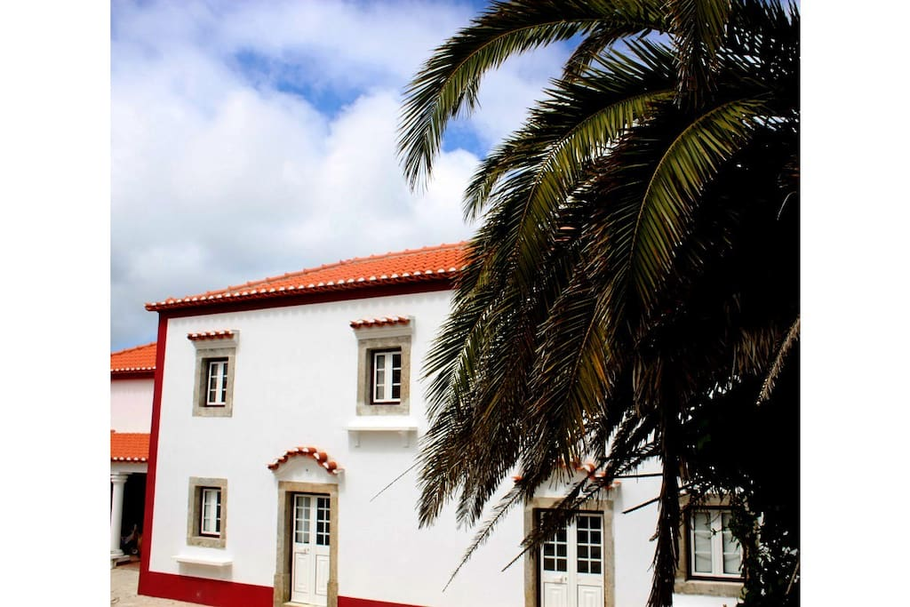 Fully recovered centenary house with palm trees
