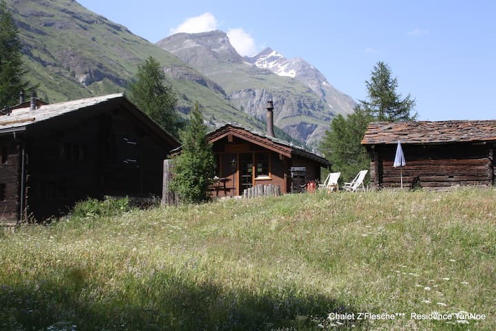 Chalet Z'Flesche***, hearty family house - Zermatt - บ้าน