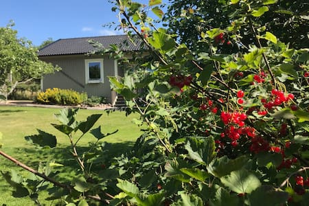 Peaceful family B&B close to the ocean & forest