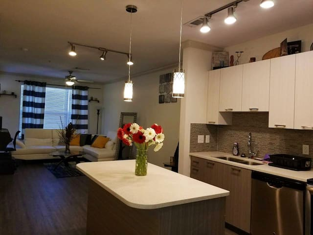 Luxurious Buckhead Apartment in Central Location