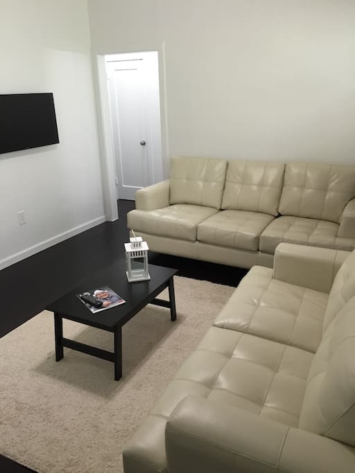 Living Room with Pull Out Sofa Bed & TV