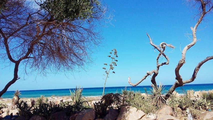 magnifique plage de sable blanc et bleu eau de mer