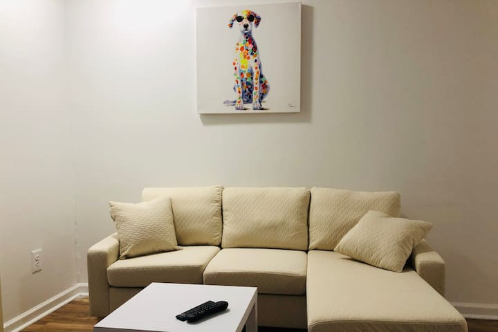 """Boutique Colorful Pets """"C"""" Entire Apartment"""