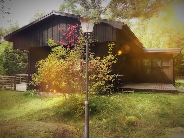 """Villa Lugnet"" on the beautiful island Ivö, Scania"