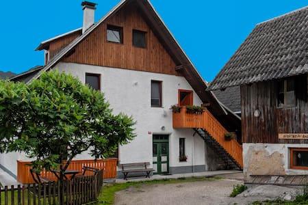 The Old Mill House apartment #1 - Stara Fužina - Apartemen