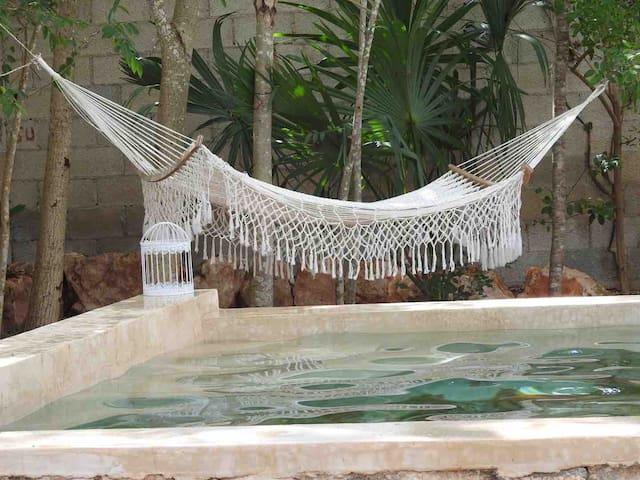 Flamboyanes Chichí, hermosa casa con piscina maya
