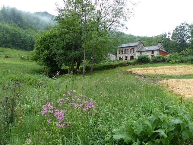 Les Pyrénées ariégeoises dans un cadre très nature