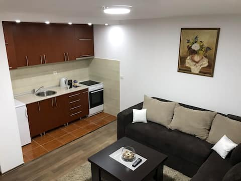 Airport stay apartment