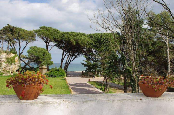 Casa amb jardí a Sant Martí d'Empúries.