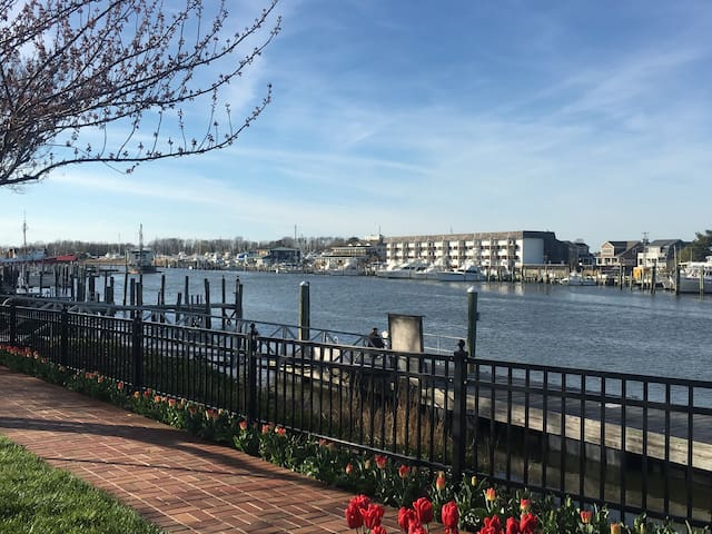 Waterfront  condo downtown Lewes - Lewes - Condominium