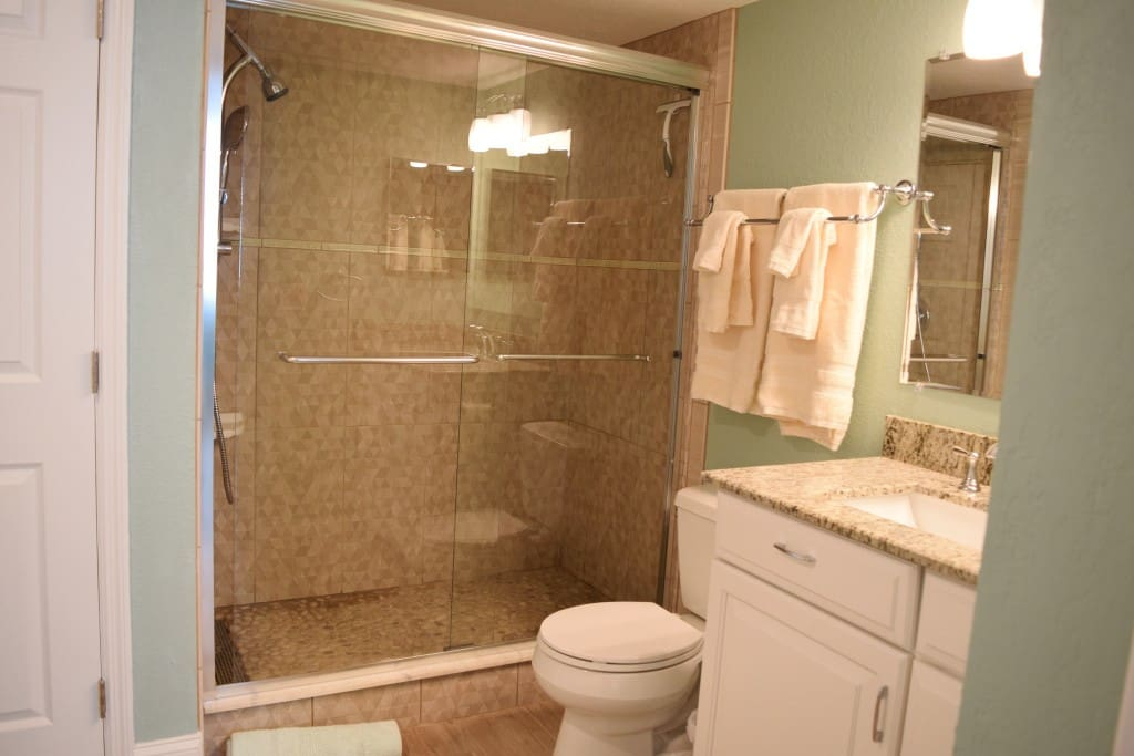 Brand new walk in shower and bathroom.