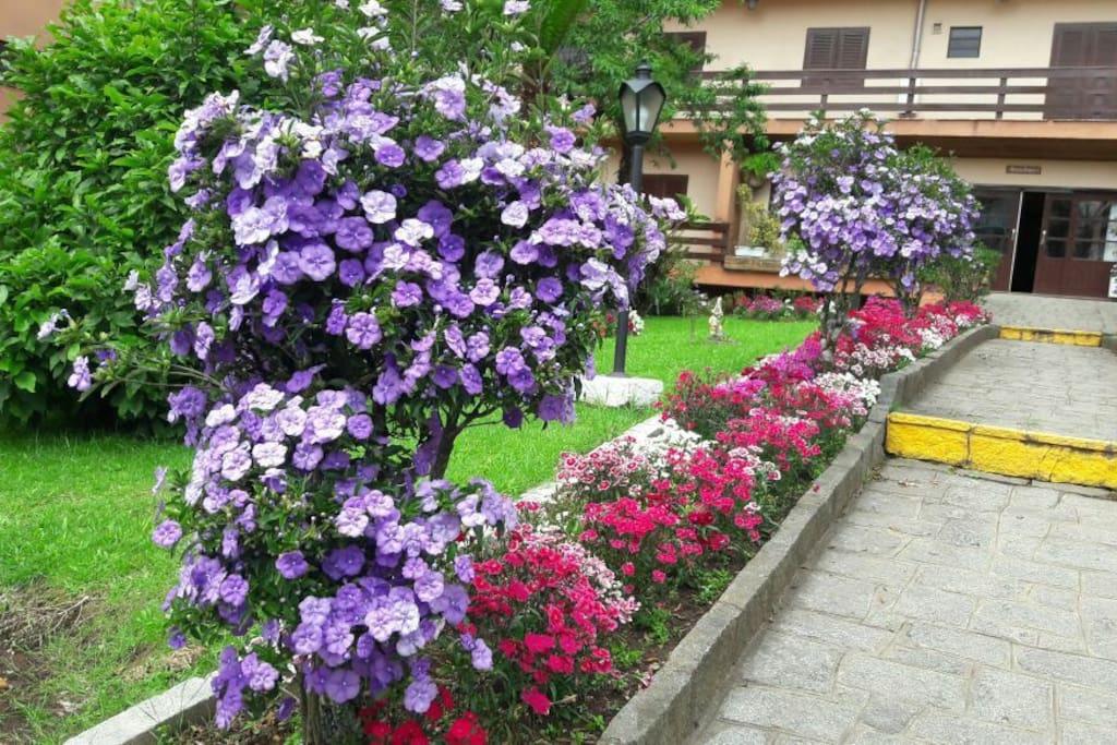 Escadaria cercada de belíssimas flores