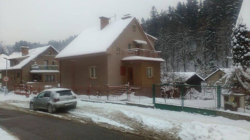 Beautiful family house - Náchod - Huis