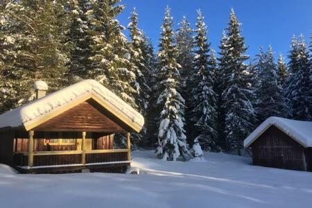 Hytte i naturen ved Finnskogen.
