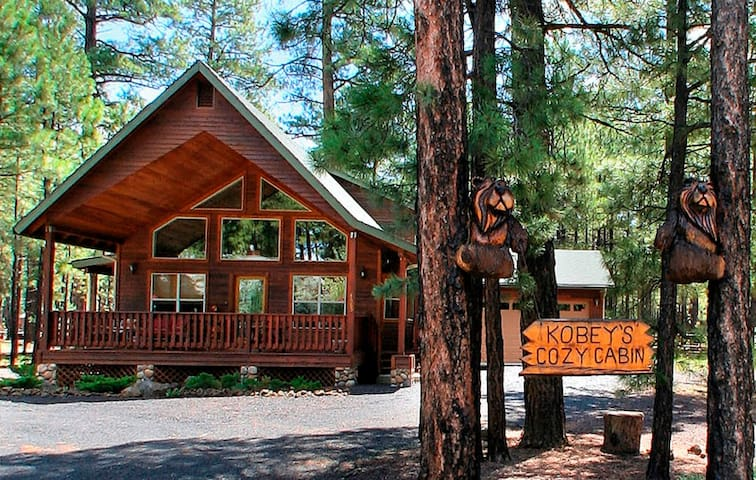 DONT MISS THIS 3 BEDROOM /2 BATH COMFY COZY CABIN!
