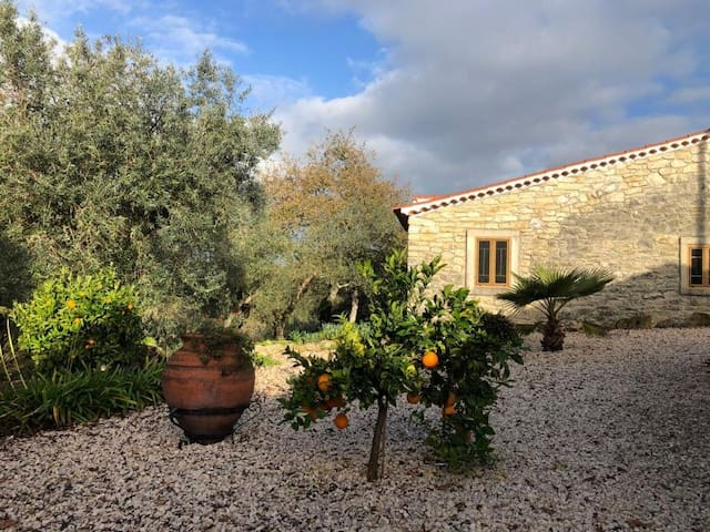 Casa Adega, Two Idyllic Cottages in Olive Groves