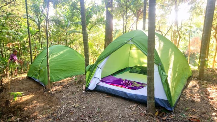 Mawlynnong  Nature  Camp Stay