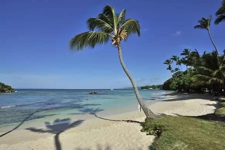 Vacation in your own private space beachside in DR