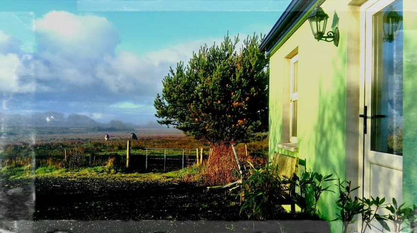 Apartment on a traditional Irish organic farm!