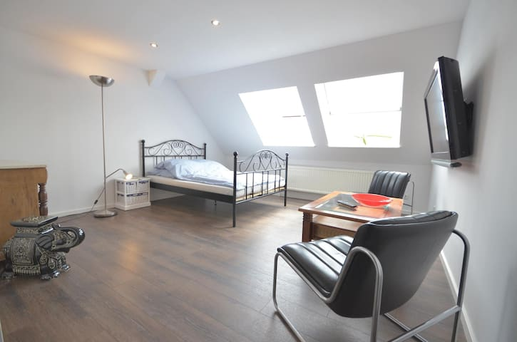 Bright attic apartment