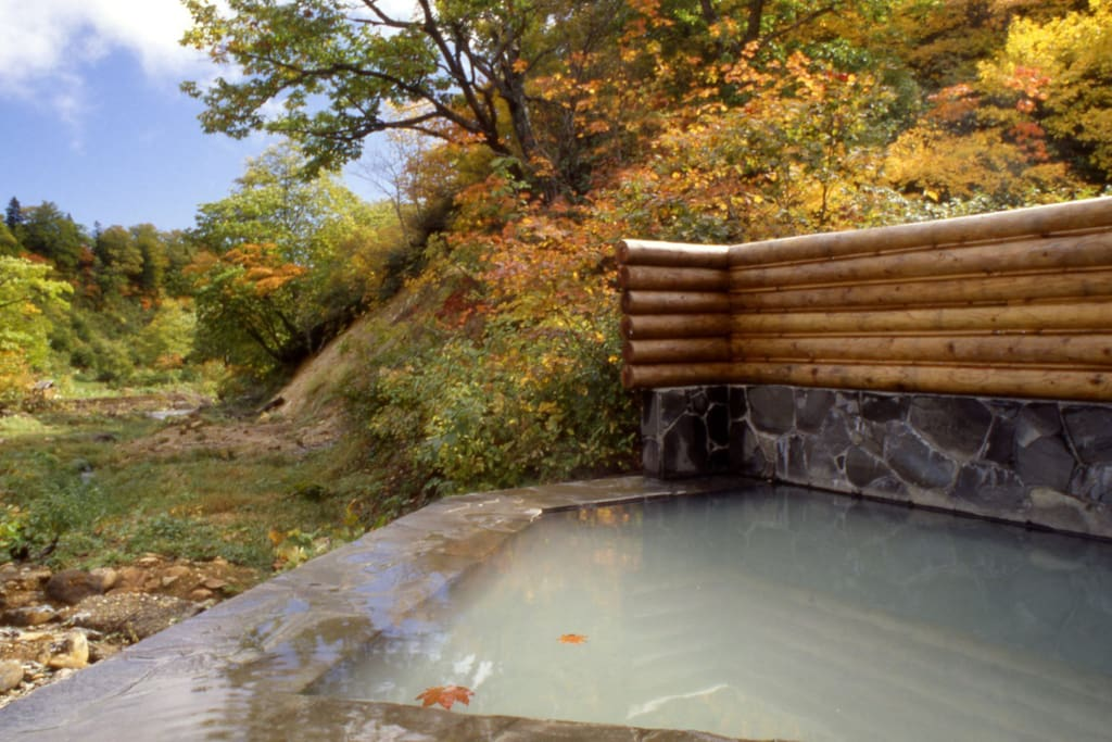 Natural hot spring - out side -