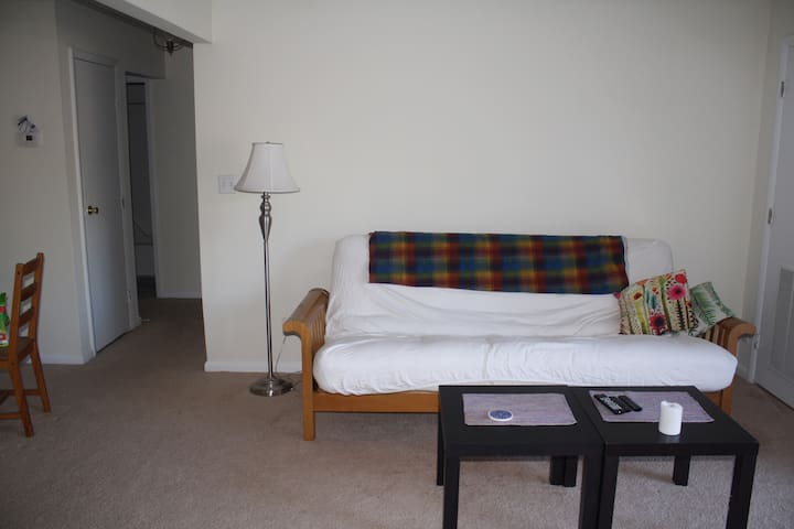 Clean, Comfortable Apartment: On-Grounds at UVA