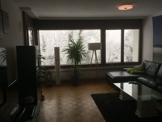 Comfortable 2.5 room apartment near Zurich