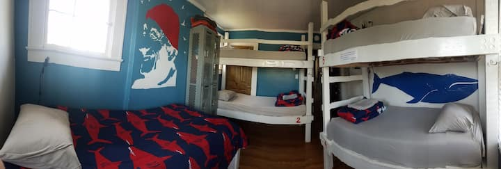 Female Dorm Bottom Bunk at BPS Hostel