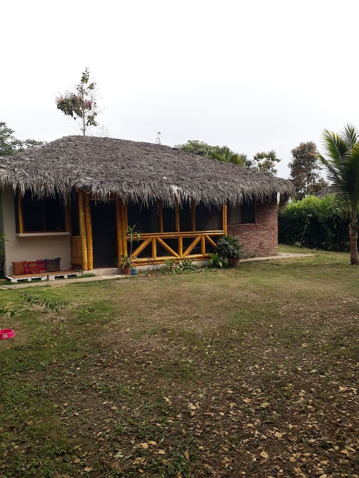 my beach house holiday rental