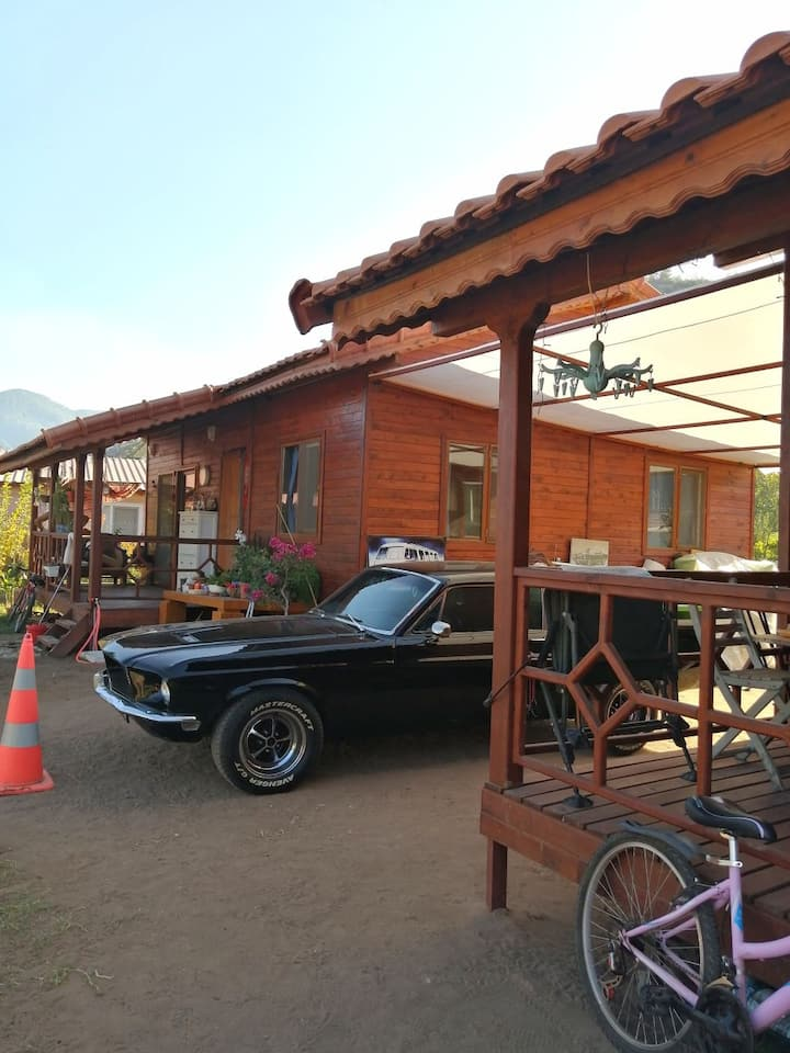 Mustang Garden