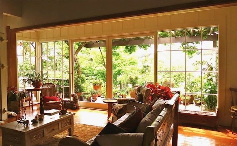 Large main lounge area with huge tv. Opens onto patio with Wisteria, bougainvillea and old roses.