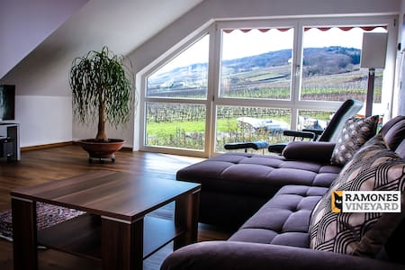 Ramones vineyard Rüdesheim am Rhein / Rheingau