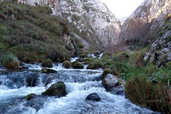 SENDERISMO y NIEVE EN ALLER (Asturias)