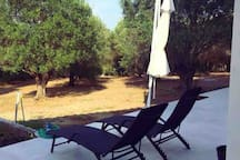 Garden for relax ... and sun !!!