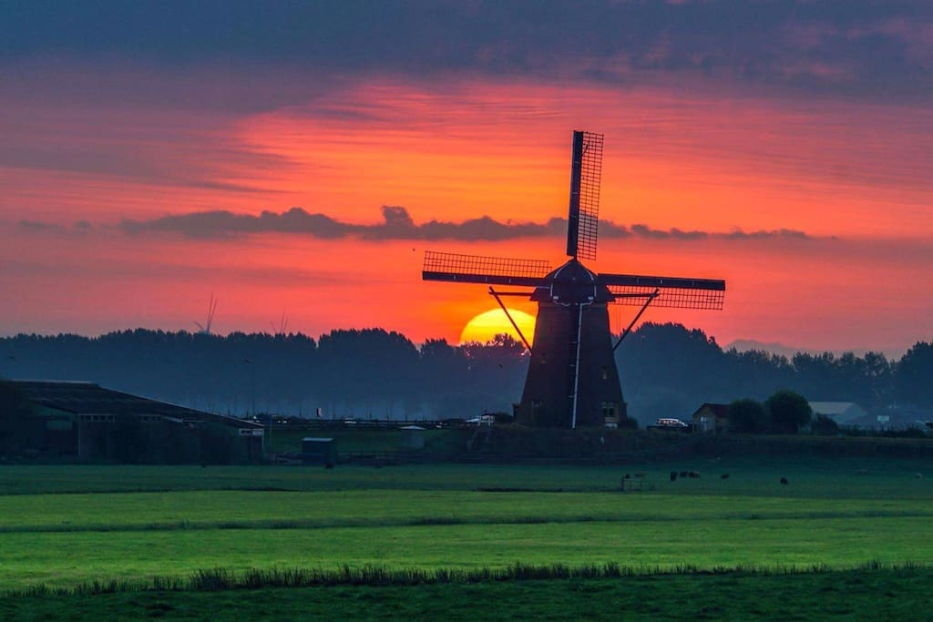 This picture I shoot myself! It's just 1.500 m from my house. There is a beautiful very small island with the most lovey dutch views.