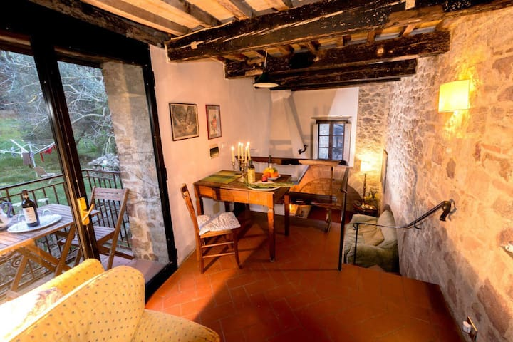 Holiday in an organic historic farm - Apartment 2p - Roccastrada - Apartment