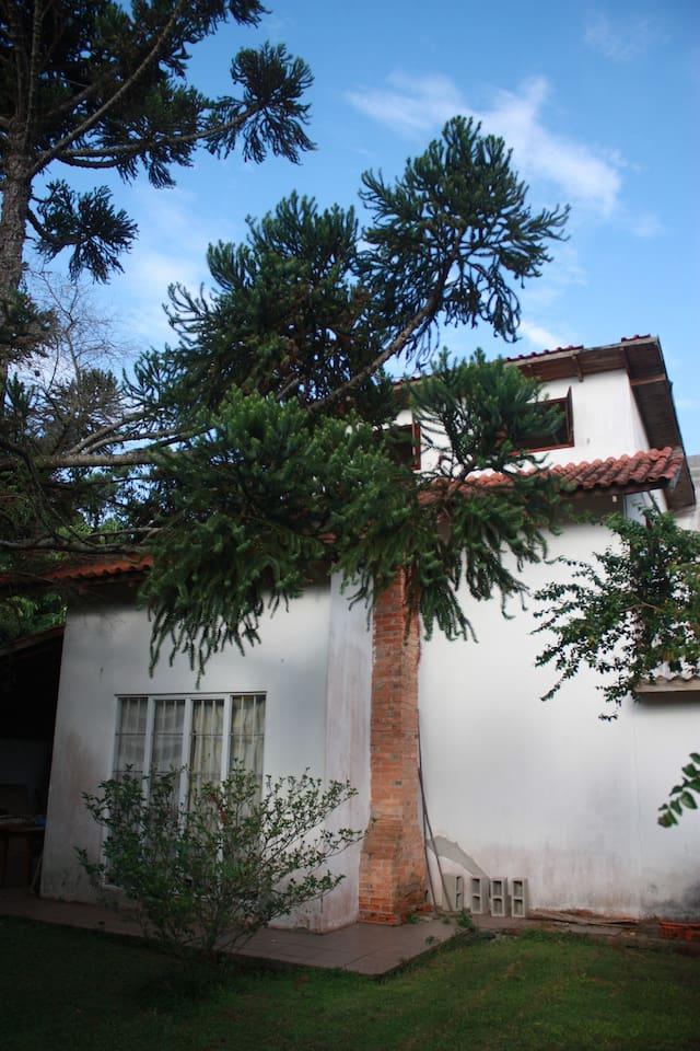 Frontal da casa, incluido sotão do loft, aparecendo as duas janelas do sotão. Araucária da frente do terreno.