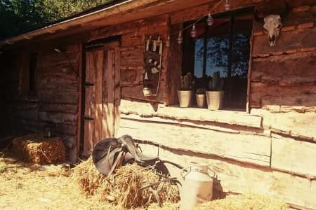 La Cabane aux Loups