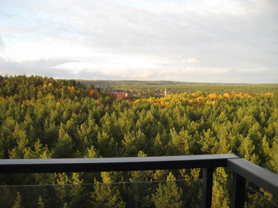 The view you can enjoy all year around. 15 minutes walk down the street through the forest and you reach river Neris.