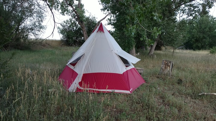 Tepee Tent Set Up Near Creek with acres to explore