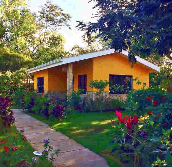 Maisonnette hibiscus