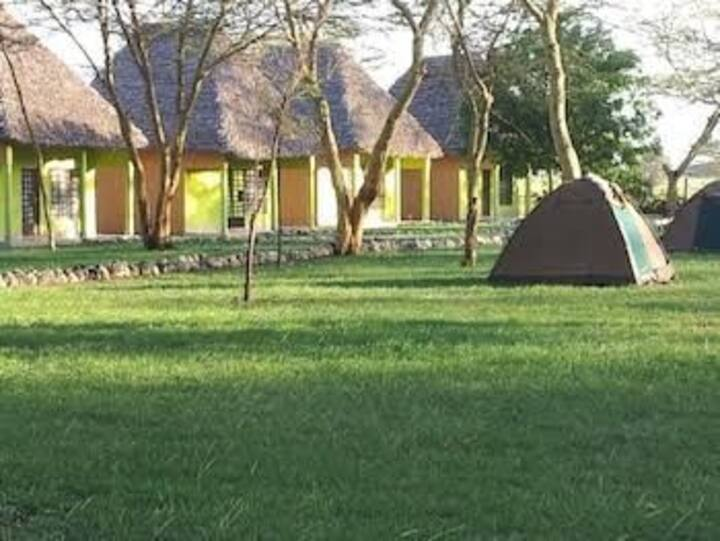 Explore the beauty of nature tanzania unforgetable