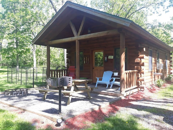 Secluded cabin in wine country - Pet friendly glamping, with breakfast included!