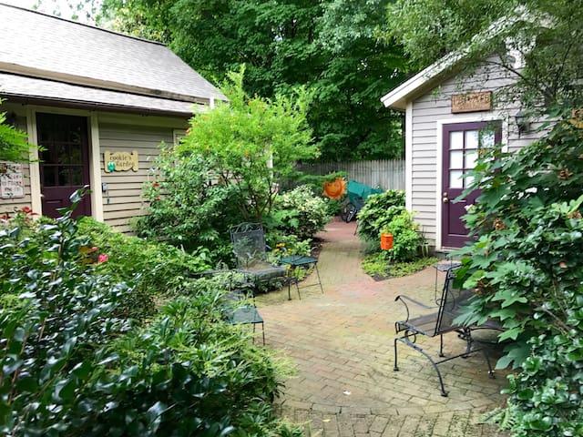 The backyard garden view
